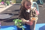 Lucy preparing to plant a strawberry plant