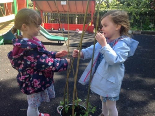 Ella and Imogen counting the willow sticks