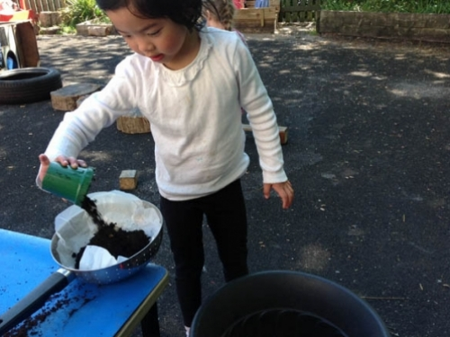 Erin filling a colander with compost ready for planting lettuce