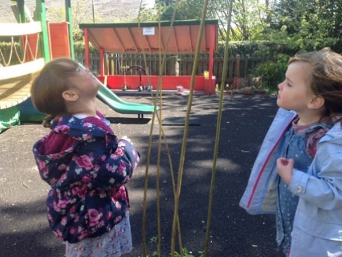 How tall are the sticks Ella and Imogen
