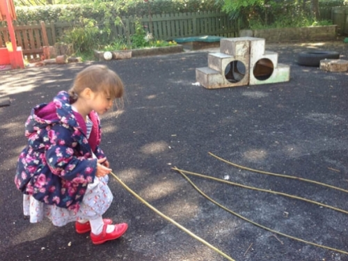 Imogen choosing willow sticks for the sweetpea cage