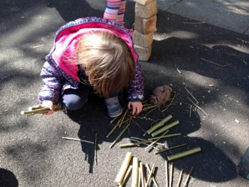 Lilly choosing sticks for the bug hotel