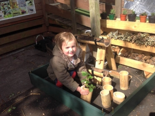 Lucy putting her bamboo pot into the palet garden