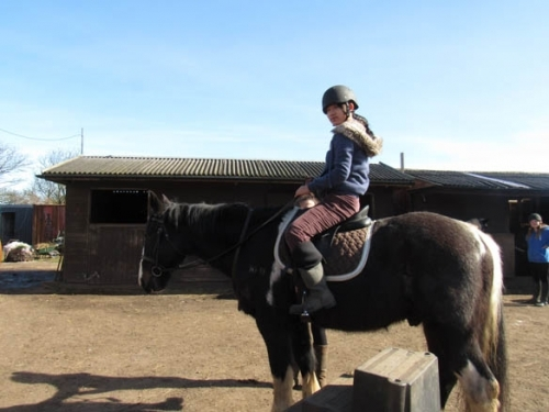 Horse Riding at North Berwick 10
